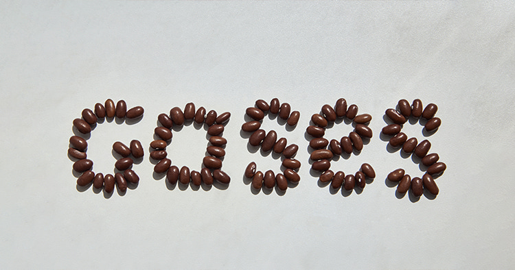 The word Gases laid out from beans, the theme of flatulence and bloating from beans.