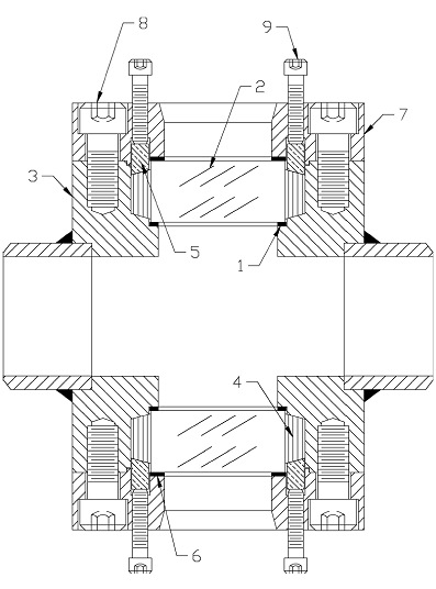Model B Safesite Sight Flow Indicator Assembly