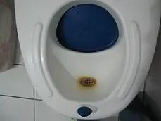 toilet-stain