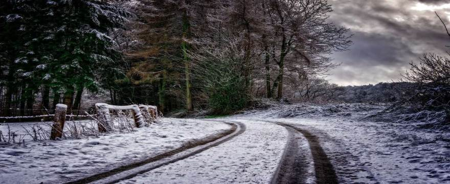 Top 5 Reasons You Need Winter Tires