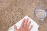 water blot carpet