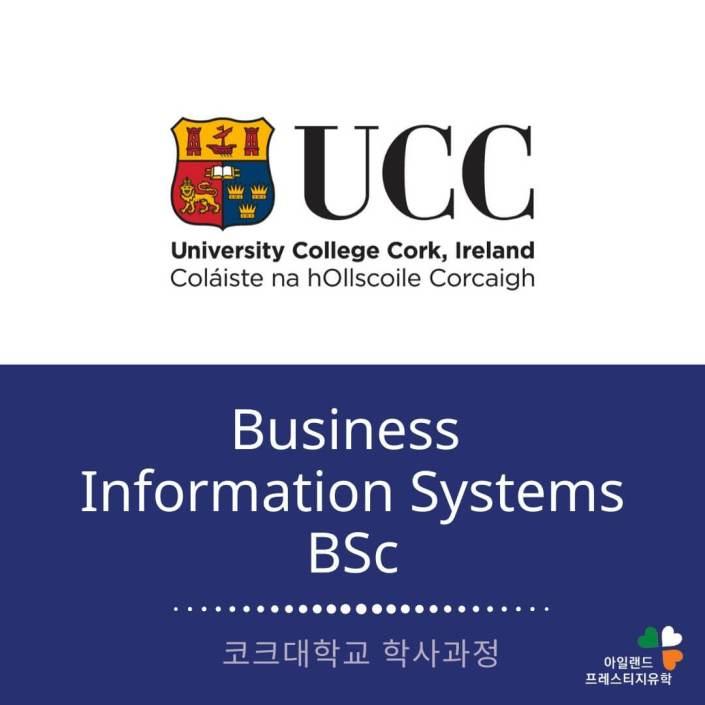 UCC 코크대학교-Business Inforamation system- 비즈니스인포메이션-아일랜드유학