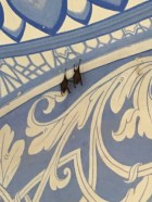 Bats. Hanging out in the palace. Like ya do!