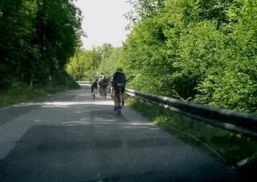 Gorenjski policisti obravnavali štiri prometne nesreče kolesarjev