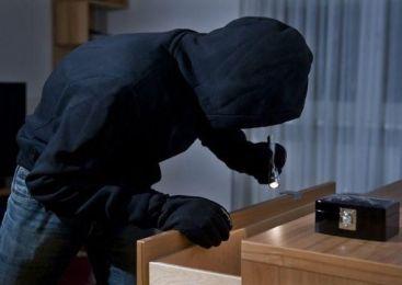 Novomeški policisti prijeli tatove in vlomilce