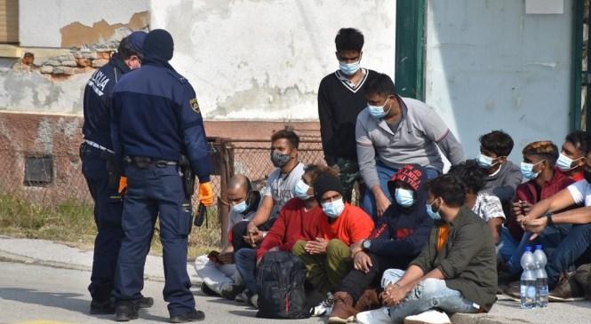 Na koprskem območju v zadnjih 24 urah obravnavali 48 ilegalnih migrantov