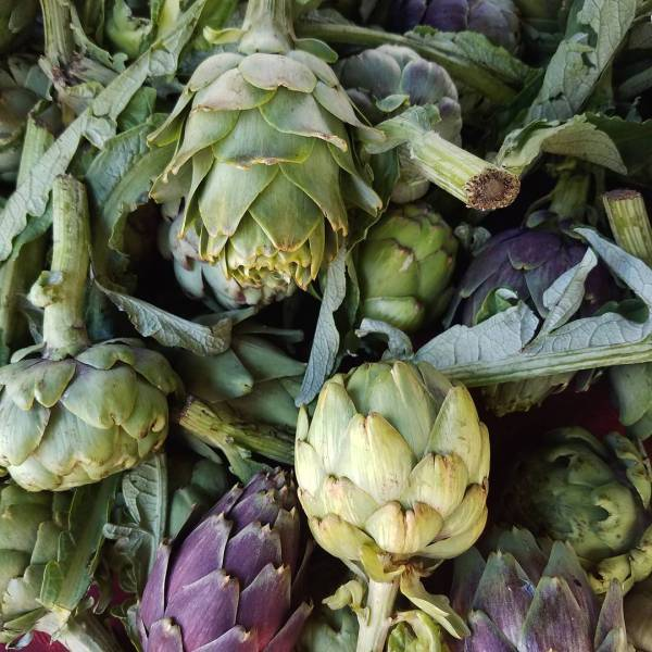 Mama whatever you do DO NOT buy any artichokes athellip