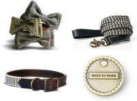 Dog Accessories Related Keywords