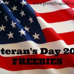 veterans day freebies 2013