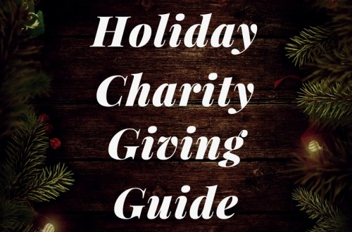 Holiday Charity Giving Guide