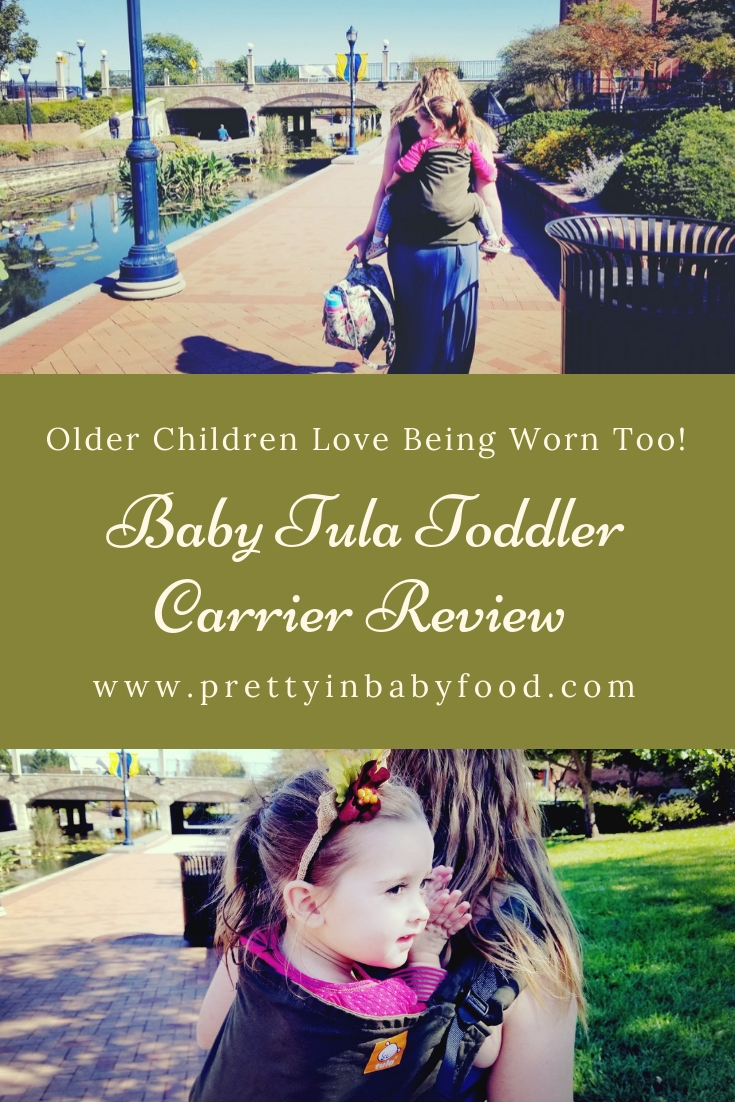 Baby Tula Toddler Carrier