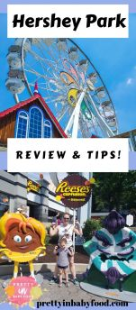 Hershey Park Review & Tips