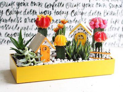 Bright Cactus Fairy Garden