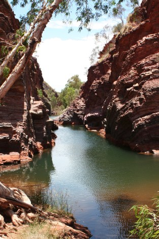Swimming through the gorges is a totally different experience