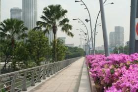 Flowers on a bridge, Singapore