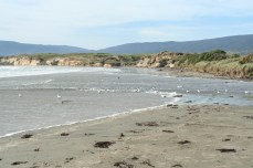 The beach where the camp is located