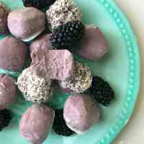Low Carb Blackberry Bites from PrettyPies.com