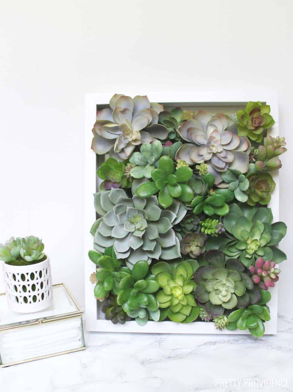 Shadow Box Succulent Decor