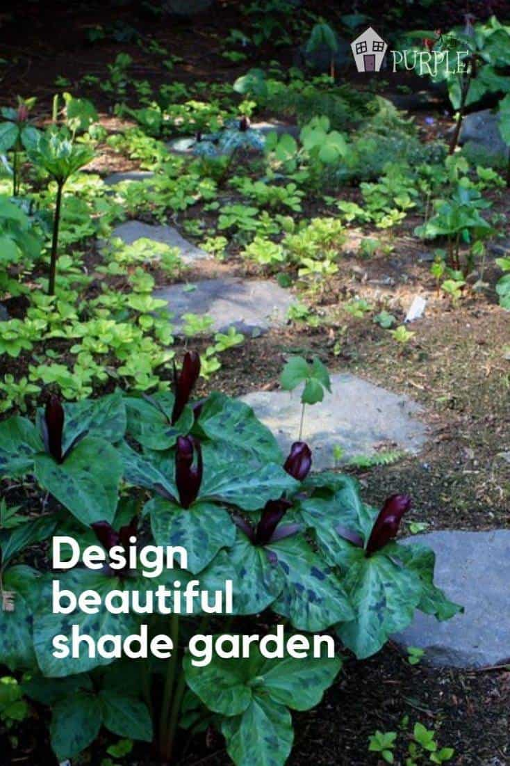 Design a beautiful garden for a shady landscape.