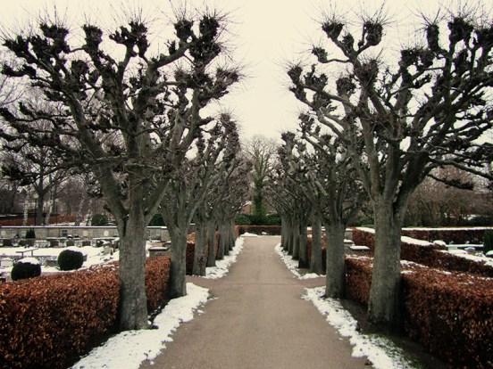 The park-cemetery