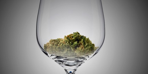 weed-and-alcohol-pairing-1105995-TwoByOne