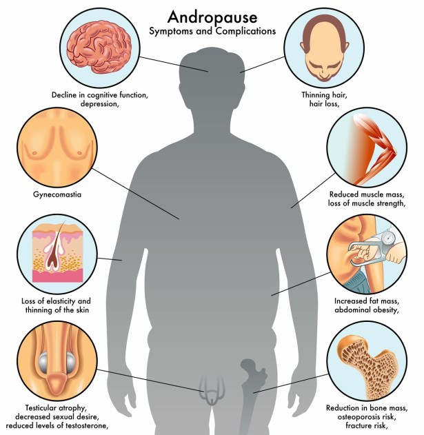Increase Testosterone Levels Naturally Preventive Health