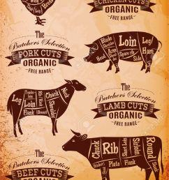 diagram cut carcasses of chicken pig cow lamb stock vector 27674023 [ 918 x 1300 Pixel ]