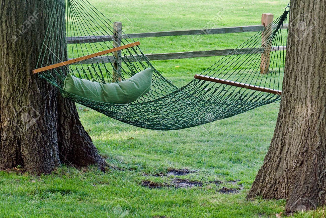 green hammock between two