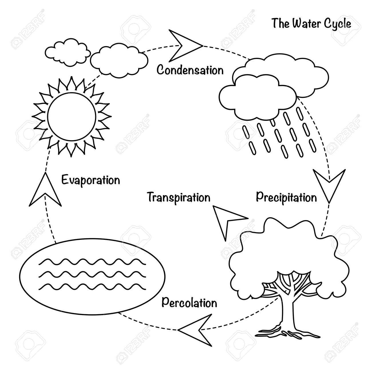 hight resolution of schematic representation of the water cycle in nature illustration of diagram water cycle cycle