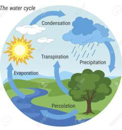 the rain cycle diagram wiring diagram load the water cycle diagram pdf [ 1300 x 1300 Pixel ]