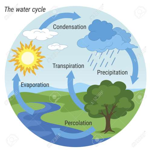 small resolution of the rain cycle diagram wiring diagram load the water cycle diagram pdf