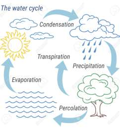 vector vector schematic representation of the water cycle in nature illustration of diagram water cycle cycle water in nature environment  [ 1300 x 1300 Pixel ]