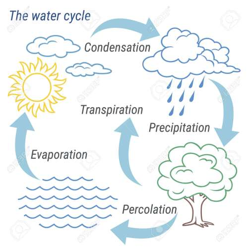 small resolution of vector vector schematic representation of the water cycle in nature illustration of diagram water cycle cycle water in nature environment