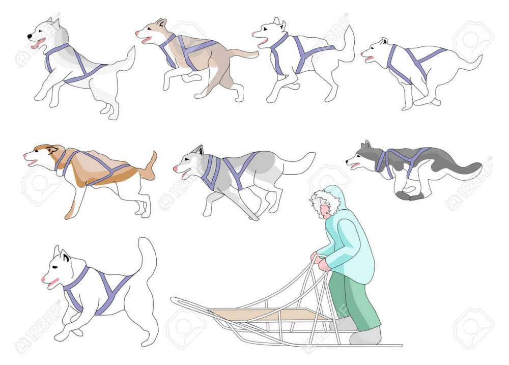 medium resolution of musher and sled dogs mix n match full page stock vector 15904028