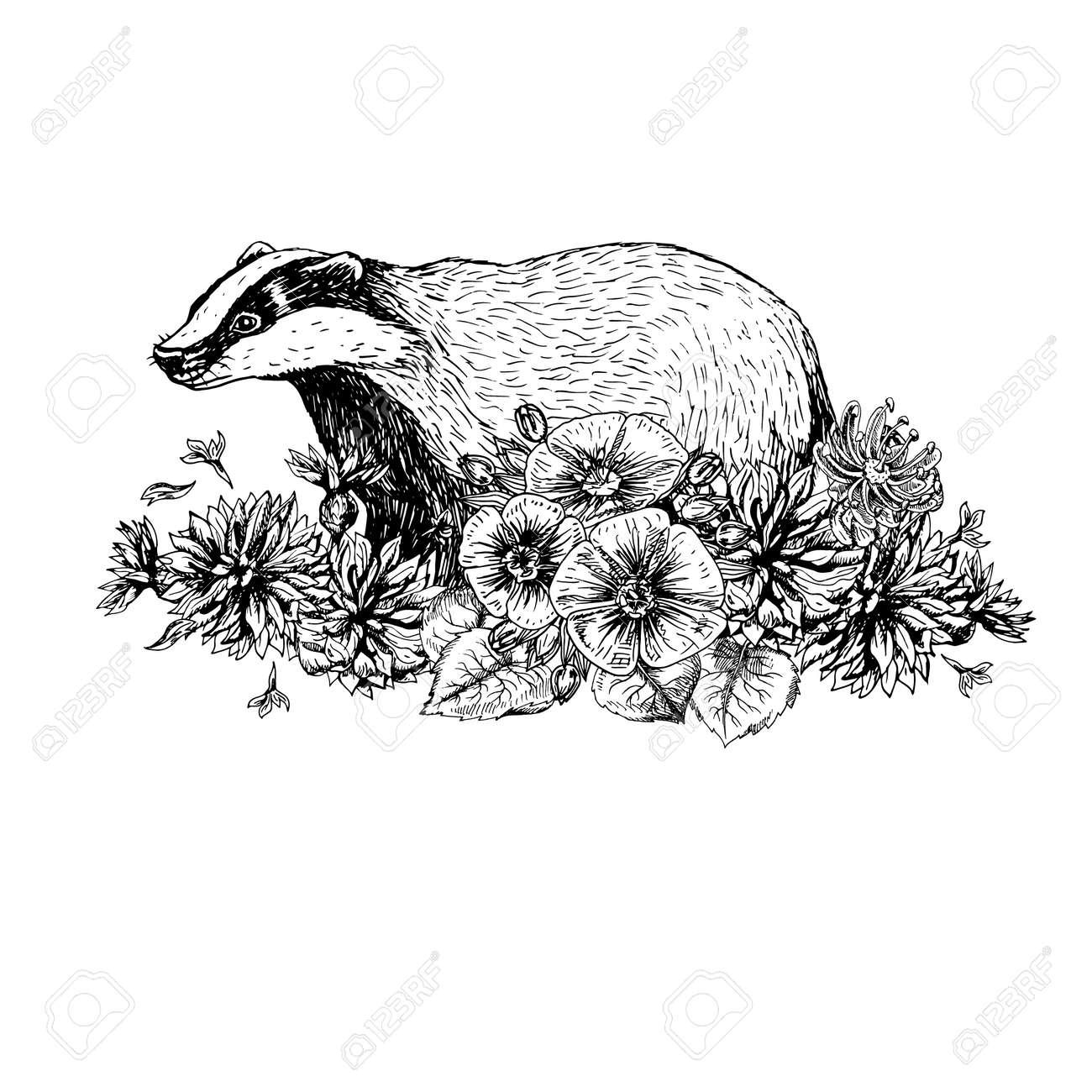 Dibujado A Mano Tejón Con Flores Estilo Vintage Imprimir Para La