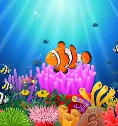 clown fish under the sea stock vector 87676292 [ 1300 x 975 Pixel ]