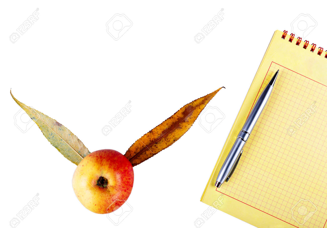 notepad and pen with
