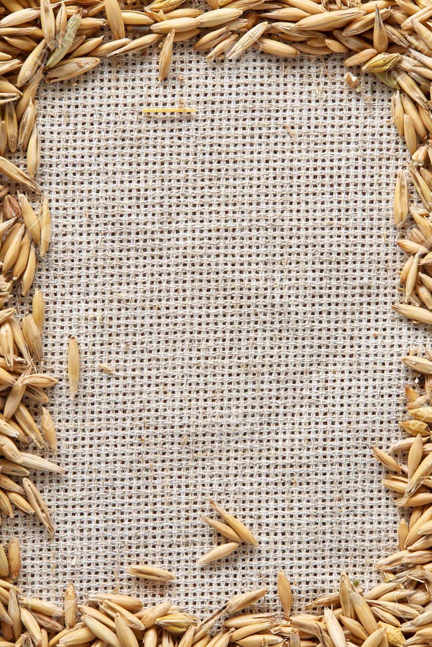 hight resolution of frame made of unpeeled oat grains on homespun or burlap tablecloth background top view close up macro selective focus dietary food vegan background