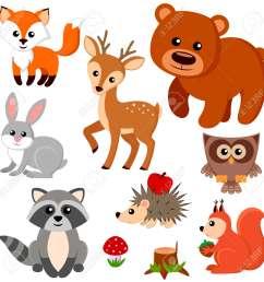 forest animals illustration [ 1300 x 1300 Pixel ]