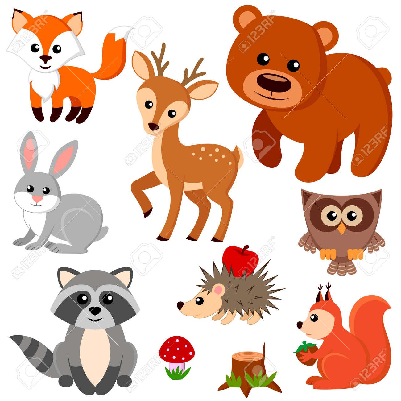 hight resolution of forest animals illustration