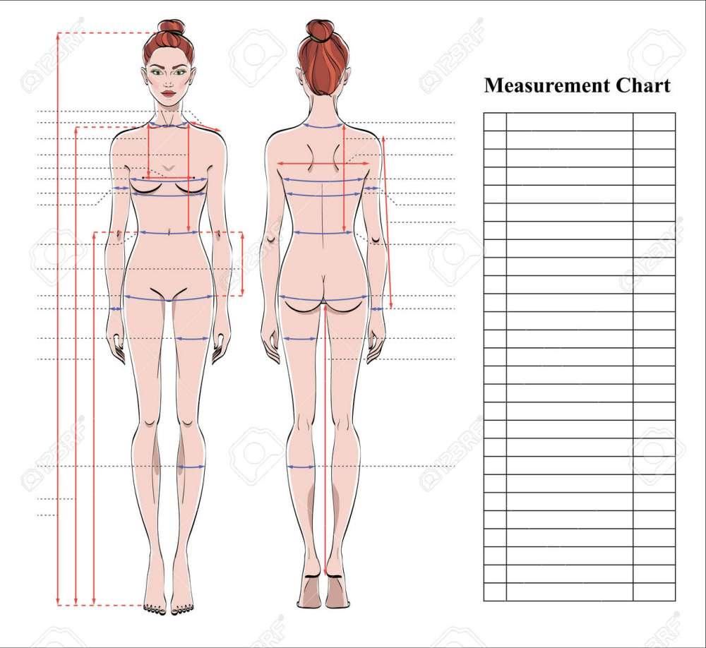 medium resolution of diagram of female back wiring diagram diagram of female back diagram of female back