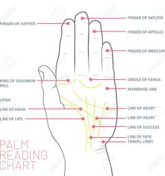 palm reading chart palmistry map of the palm s main lines stock vector 103245063 [ 1300 x 1300 Pixel ]