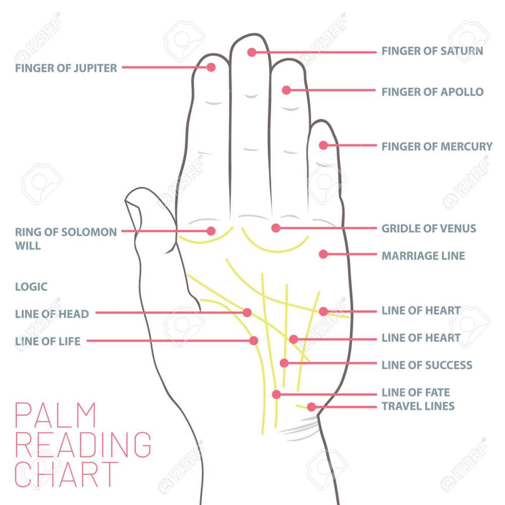 medium resolution of palm reading chart palmistry map of the palm s main lines stock vector 103245063