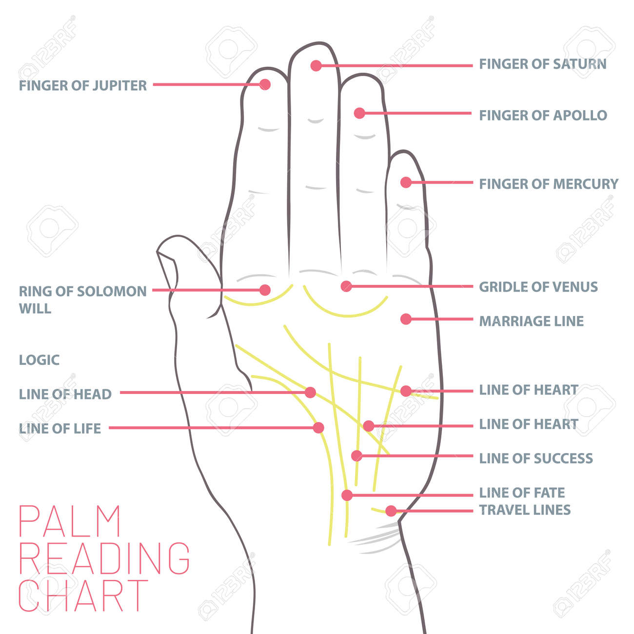 hight resolution of palm reading chart palmistry map of the palm s main lines stock vector 103245063