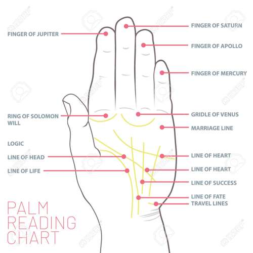 small resolution of palm reading chart palmistry map of the palm s main lines stock vector 103245063