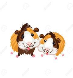 guinea pig little cute homemade cartoon fun art piggy clipart stock vector 102210359 [ 1300 x 1300 Pixel ]