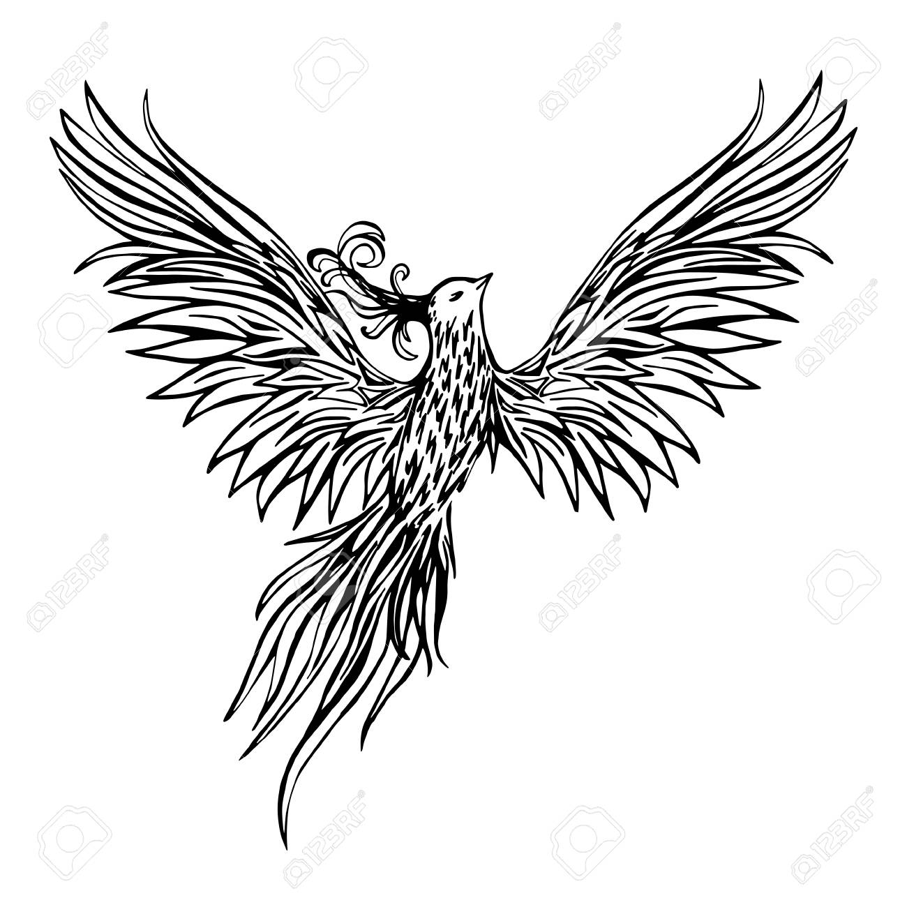 Phoenix Bird Tattoo Designs