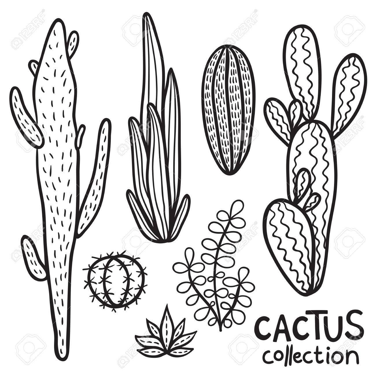 hand drawn cacti abstract
