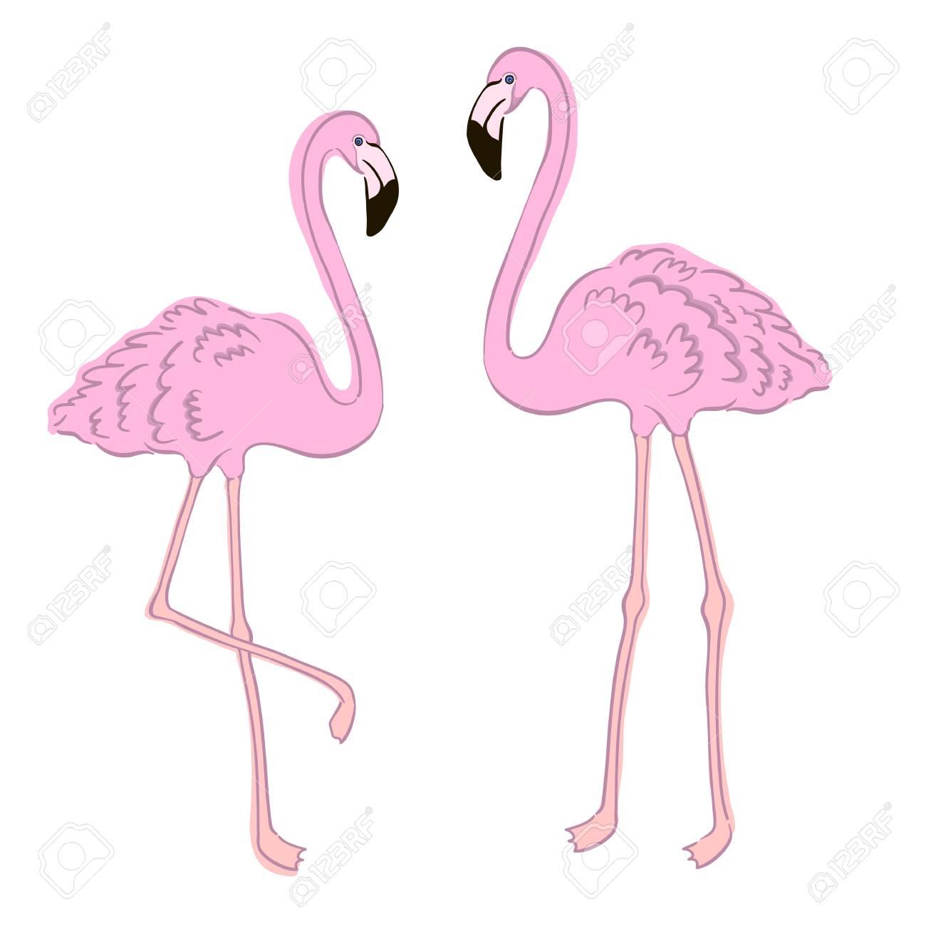 tropical pink flamingo element