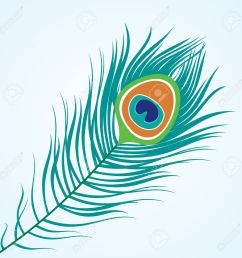 vector vector isolated peacock feather [ 1300 x 1300 Pixel ]